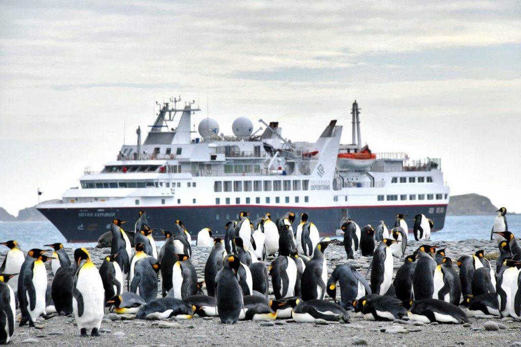 An Exhilarating Adventure Cruise To The Falklands, South Georgia Island And Antarctica